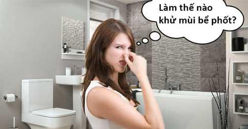 Cách khử mùi hôi bể phốt nhà vệ sinh