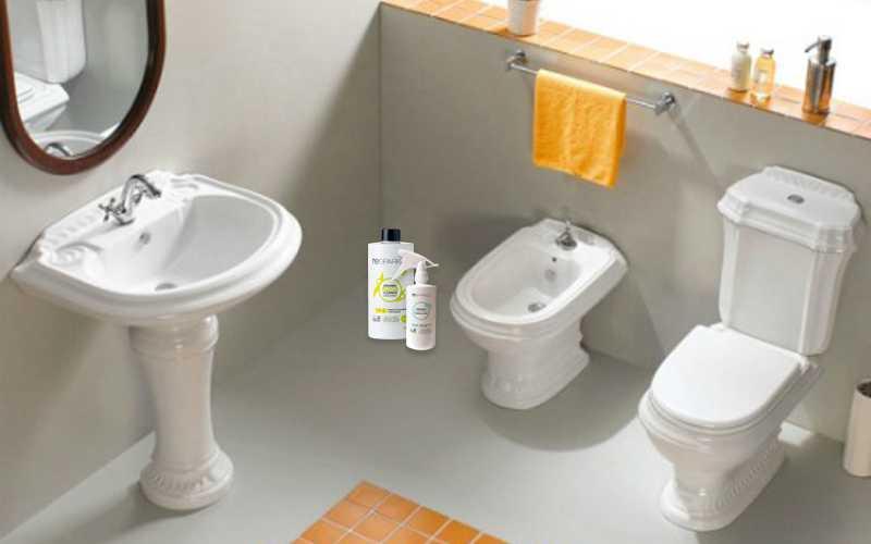 Cách khử mùi hôi trong phòng vệ sinh đơn giản hiệu quả