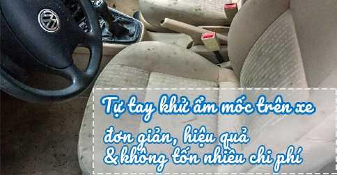 Tự tay ngăn chặn ẩm mốc trên xe ô tô không phải tốn nhiều chi phí